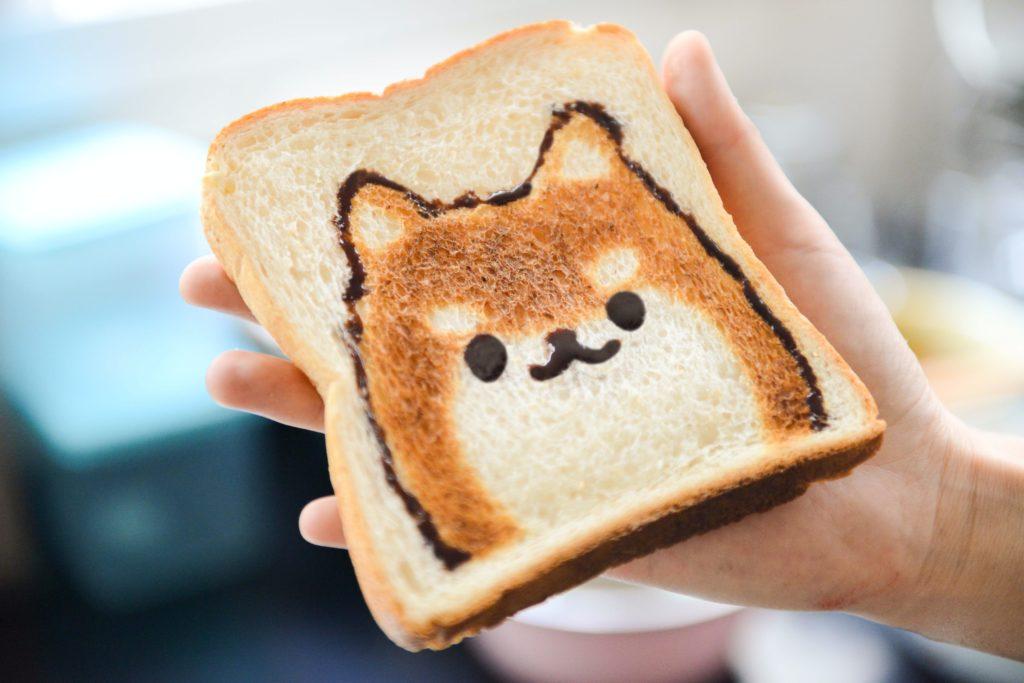 nourriture pour mon chien
